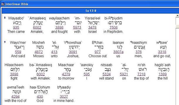 The Name | Bet HaShem YHWH Worldwide Ministries